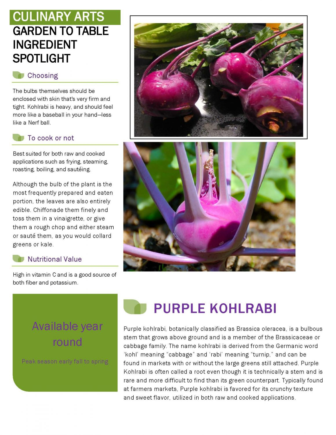 Culinary garden news letter 013120 Page 1 scaled Academic Affairs 01/31/20