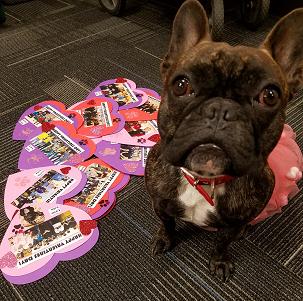Valentine Lola1