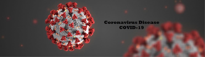 Coronavirus Update COVID 19 image LIVE CHAT NOW! COVID 19 Update 03/24/20